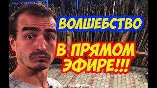 Дом 2 Новости!