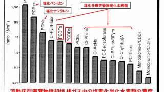 プラスチック混燃における問題点 宮田秀明(摂南大名誉教授)E-wave Tokyo