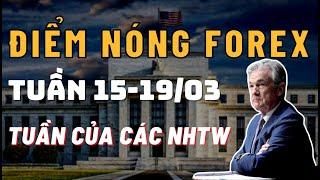 ✅Điểm Nóng Forex - Tuần Của Các Ngân Hàng Trung Ương - 15/3