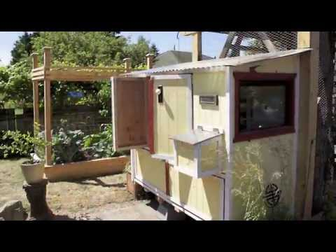 Seattle Tilth's Chicken Coop & Urban Farm Tour