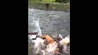 Ethiopian funny video