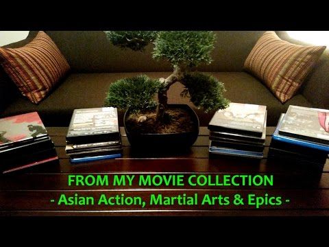 My Movies: ASIAN ACTION & KUNG FU Movie Collection