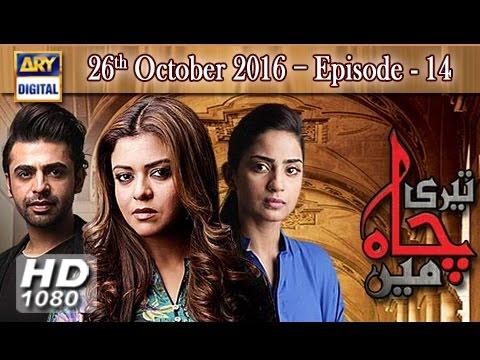 Teri Chah Mein Ep 14 - 26th October 2016  - ARY Digital Drama