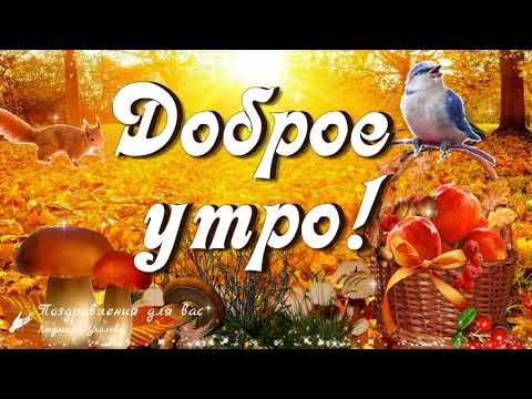 ☕️ Доброе осеннее утро! 🍁 Прекрасного дня!  Музыкальная видео открытка.