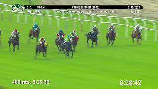 Vidéo de la course PMU PRIX TATTOUM 2010