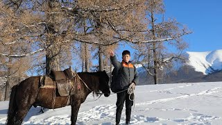 Courier rides horse on snow land to deliver parcels in China's Xinjiang