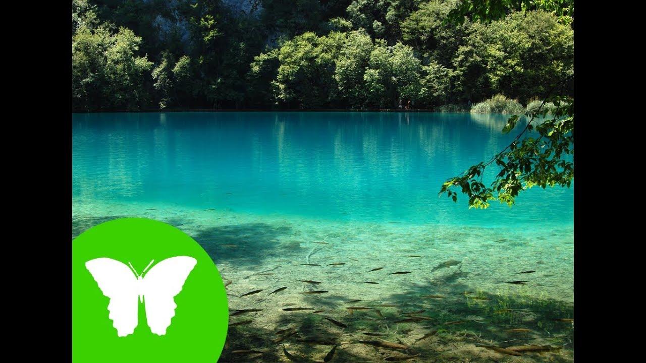 La eduteca el agua en la naturaleza youtube for Noticias naturaleza
