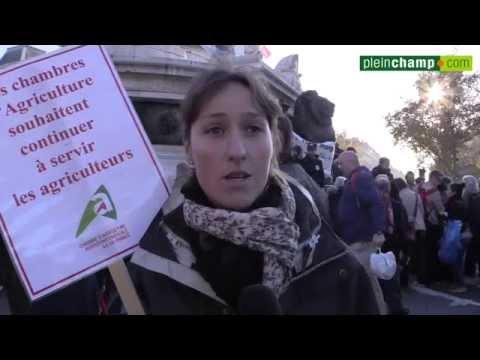 """Manifestation FNSEA/JA : """"Produire français pour manger français ! """""""