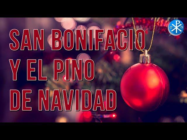 San Bonifacio y el Pino de Navidad    Perseverancia - P. Gustavo Lombardo