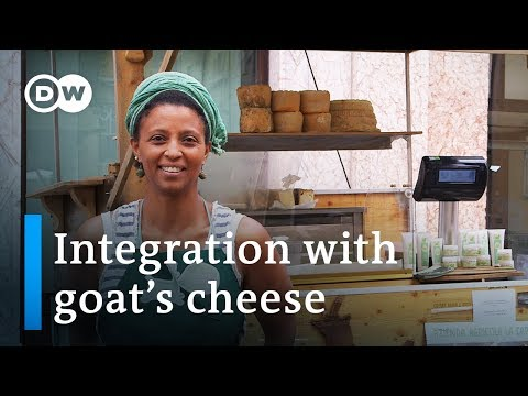 Making cheese in the Alps - a story of integration | DW Docu