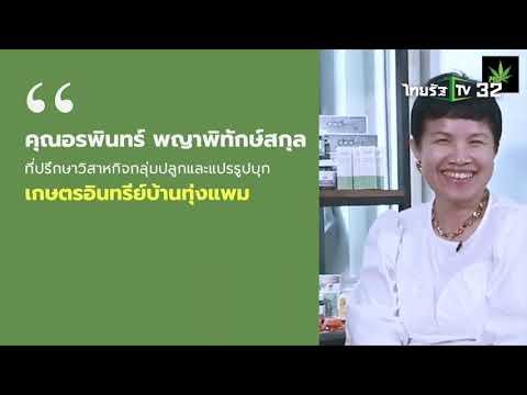 เกษตรอินทรีย์วิถีท่องเที่ยวเบรก3 ทุกเรื่องเกษตรไทย