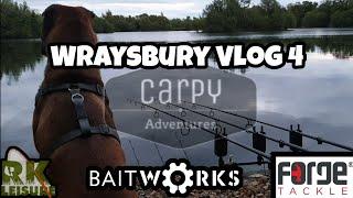Wraysbury Vlog 4 - Carp Fishing June 2019