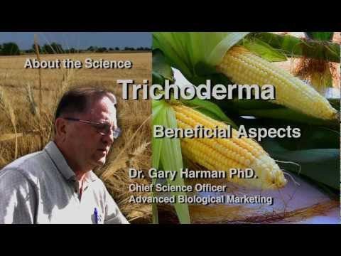 Dr. Gary Harman: Beneficial Aspects of Trichoderma