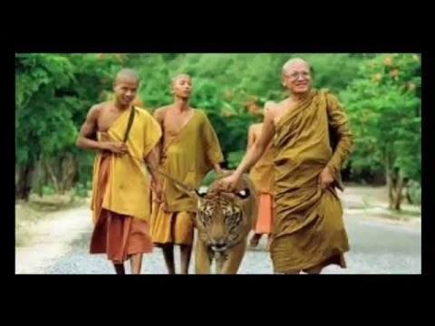 6 películas budistas que te enseñarán las estaciones de la vida