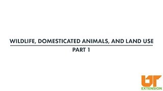 Wildlife, Domesticated Animals and Land Use   part 1