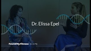 How poor diet, environmental stress and chemical exposure affect telomeres | Elissa Epel