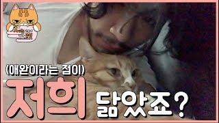 고양이를 안고서 뒹굴거려 보았습니다. thumbnail