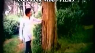 Poojaiketha Poovithu Chitra Ilayaraja Hits Neethana Andha Kuyil - YouTube 4ahil