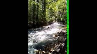 Sokobanja reka Moravica