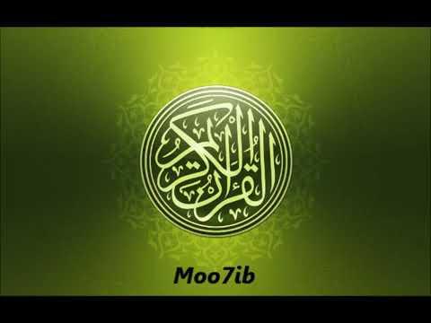 سورة النور الشيخ ميثم التمار Youtube