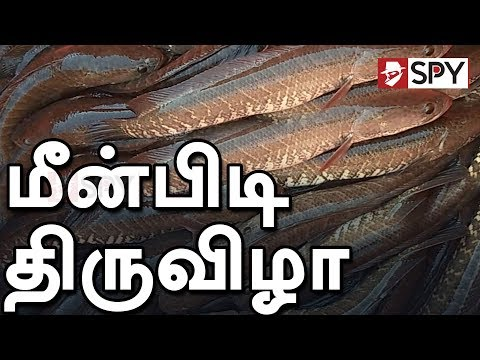 Traditional Fishing in Periyasevalai Lake | Million Of Fishes Catching in Tamilnadu #Fishing