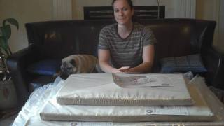Orthopedic Dog Bed Test Results