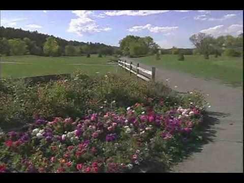 Rapid City Economic Development Video.flv