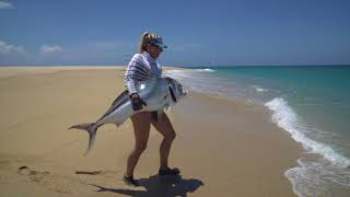Kates big Roosterfish off the beach!
