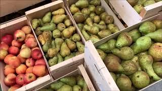 El Banco de Alimentos de Valladolid presenta su Gran Recogida