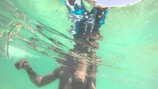 Snorkeling in the Dry Tortugas fort Jefferson