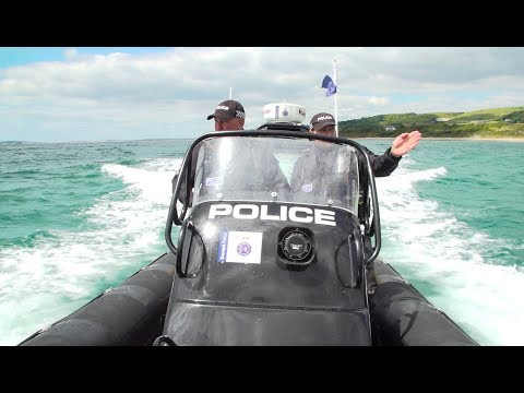 Behind the scenes with our Marine and Dive Teams