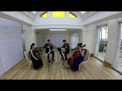 Liquid Strings quartet showreel