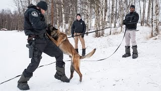 Anchorage Police Department K-9 Unit Training