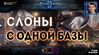 НАРОЧНО НЕ ПРИДУМАЕШЬ: Самые безумные стратегии и самые дикие сценарии в играх любителей StarCraft 2