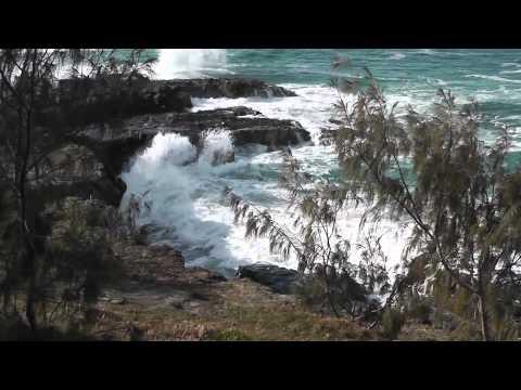 Australia 2011 - Noosa, QLD