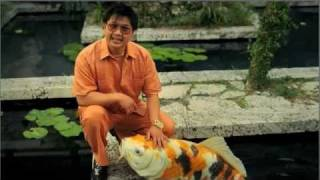"""DIRECTV """"The Whale"""" [HQ]2011 Commercial with Dat Phan"""