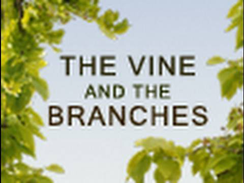 The Vine and the Branches - Paul Washer