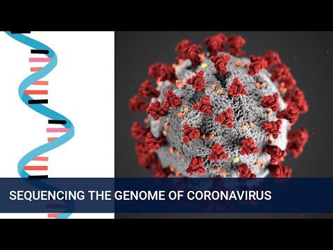 Tracking the spread and mutations of Coronavirus (COVID-19)