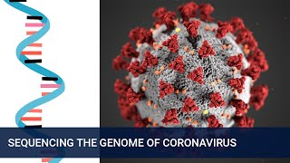 Tracking the spread and mutations of Coronavirus (COVID-19)