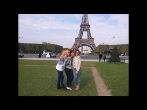 Your internship in France with ALZEA - Team
