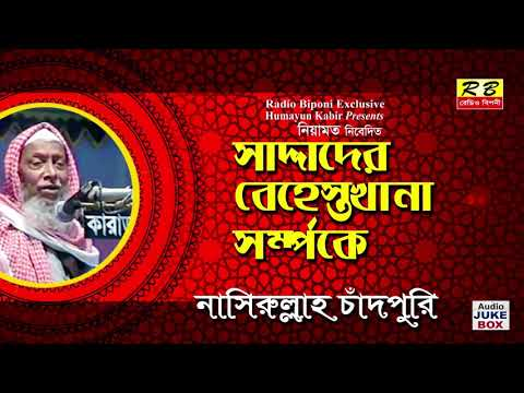 সাদ্দাদের বেহেস্তখানা সম্পর্কে। নাসিরুল্লাহ  চাঁদপুরি। Saddader Behestkhana By Nasir Ullah  Cadpuri
