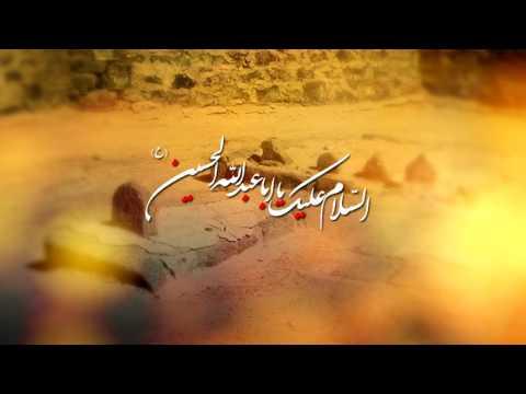 Bhai Bhai Pukarti Rahi Main   Mir Hasan Mir   New Noha 2016-17/1438 [HD]