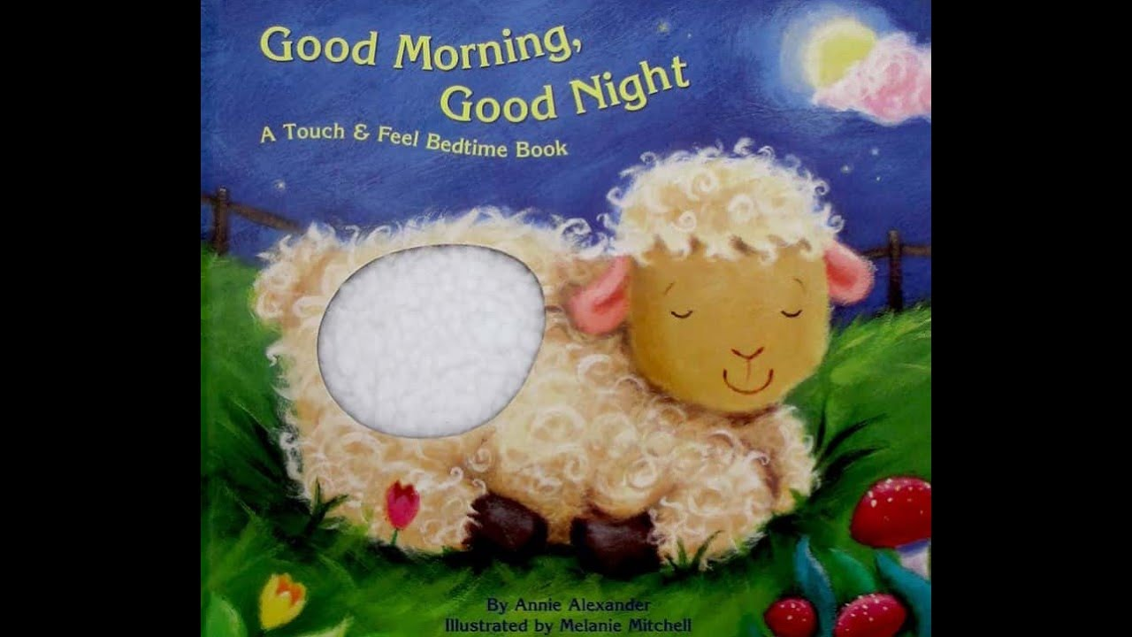 Good Morning Good Night By Annie Alexander Children S Book Read Aloud Youtube