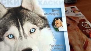 Мои журналы: Мой друг собака