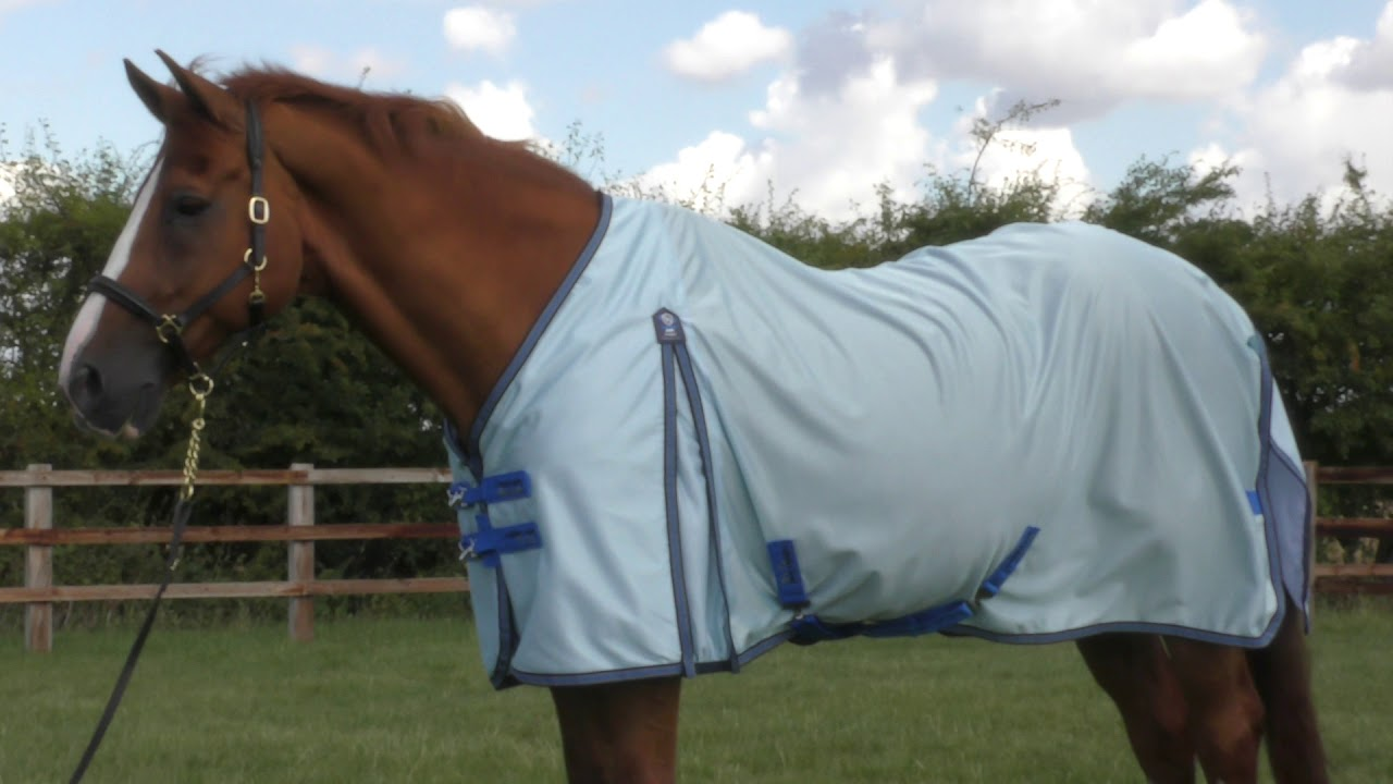 Premier Equine Mesh Air Fly Rug You