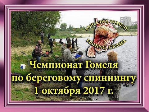 Чемпионат Гомеля по