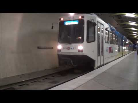 Washington Park MAX Trains November 2015