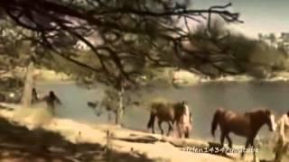 Native American - Run Free