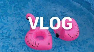 동해 수변공원에서 힐링?, 해산물들과 여름여행 vlog
