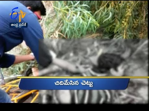 Andhra Pradesh | 20th June 2017 | Ghantaravam 9 AM News Headlines